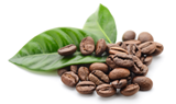 coffee-beans-green-2